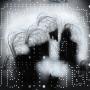 Chicots, estampe numérique sur papier, 100 x 75 cm, 2014