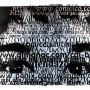 Juan, transferts photo et huile sue feuilles d'argent et papier, 56 x 76 cm 2000